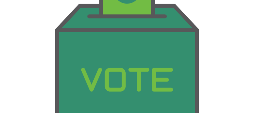 <strong>Your vote is your voice: USE IT!</strong>